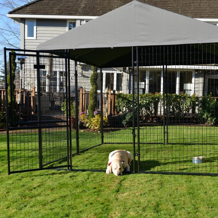 Lucky Dog® STAY Series™ 10'W x 6'H Presidential Kennel