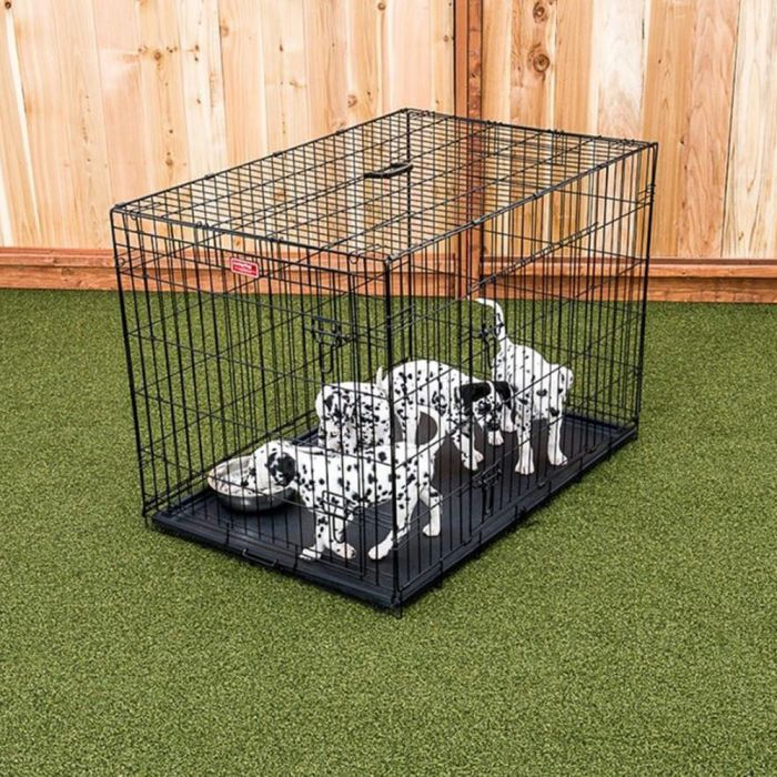 Lucky Dog® 2-Door Pet Crate