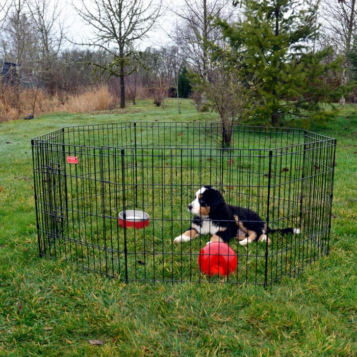 Lucky Dog Exercise Pen
